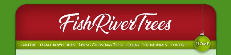 Farm grown trees for Fish river tree farm